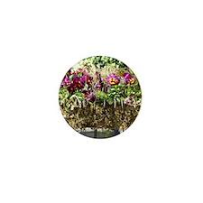 Box of Blooms Mini Button