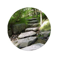 Stepping Stones 3.5