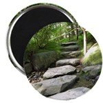 Stepping Stones Magnets