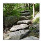 Stepping Stones Tile Coaster