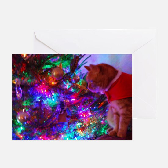 Santa Cat Greeting Card