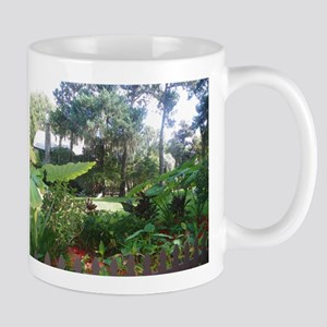 Fountain of Youth View Mugs