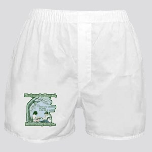No Substitute For Books Boxer Shorts
