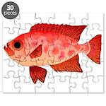 Glasseye Puzzle