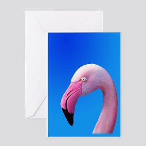 Pink Flamingo Portrait Close Up Greeting Cards