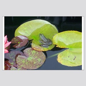 Close Up Frog on Lily Pad Large Poster