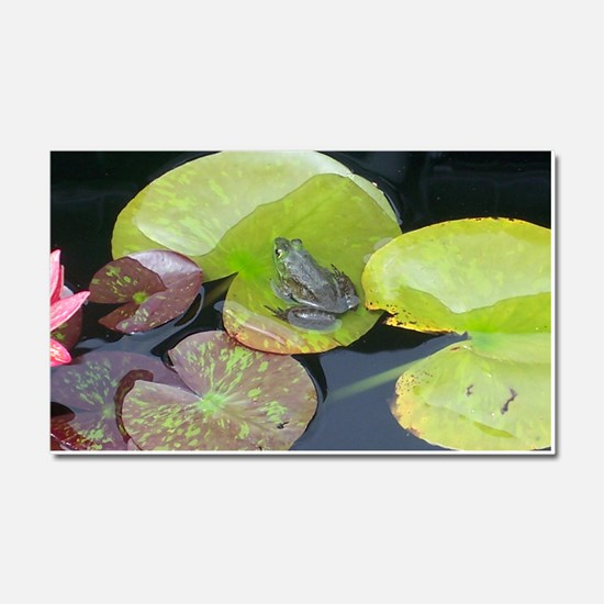 Close Up Frog on Lily Pad Car Magnet 20 x 12