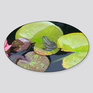 Close Up Frog on Lily Pad Sticker (Oval)
