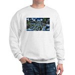 Summer day Sweatshirt