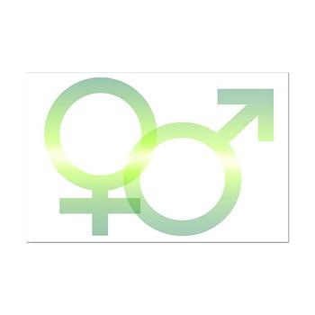 Male/Female Symbols Mini Poster Print