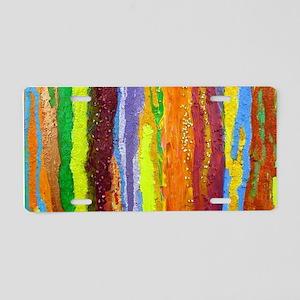 Paint Colors Aluminum License Plate