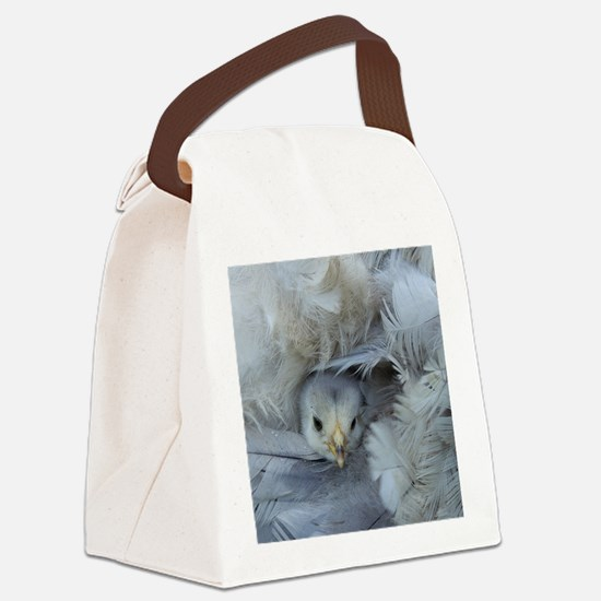 chickens chicks in the spring Canvas Lunch Bag