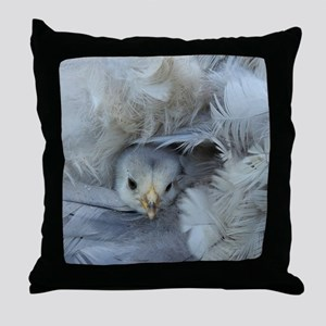chickens chicks in the spring Throw Pillow