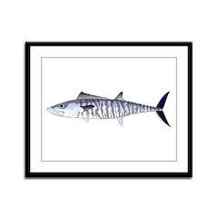 Narrow-barred Spanish Mackerel Framed Panel Print