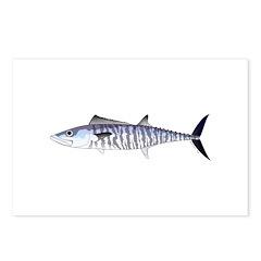 Narrow-barred Spanish Mackerel Postcards (Package