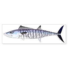 Narrow-barred Spanish Mackerel Bumper Bumper Sticker