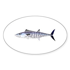 Narrow-barred Spanish Mackerel Decal