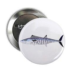Narrow-barred Spanish Mackerel 2.25