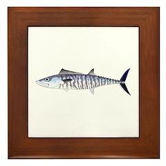 Narrow-barred Spanish Mackerel Framed Tile