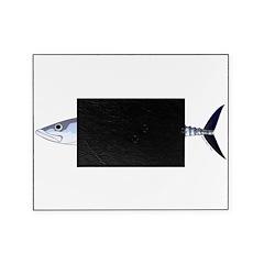 Narrow-barred Spanish Mackerel Picture Frame