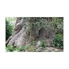 Eucalyptus Tree Decal Wall Sticker