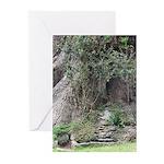 Eucalyptus Tree Greeting Cards