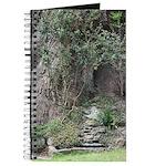 Eucalyptus Tree Journal