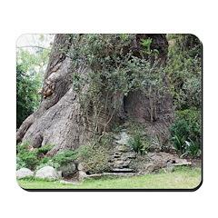 Eucalyptus Tree Mousepad