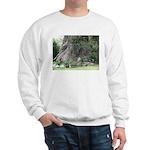 Eucalyptus Tree Sweater