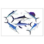 6 Billfish Posters