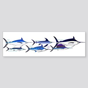 6 Billfish Bumper Sticker