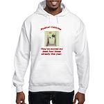 Musical Cubicles Hooded Sweatshirt