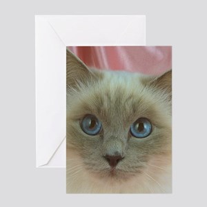 Siamese Cat gifts Greeting Cards