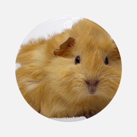 Guinea Pig gifts Ornament (Round)