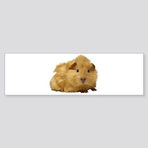 Guinea Pig gifts Bumper Sticker