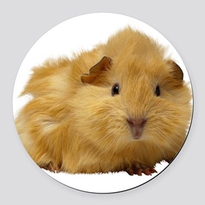 Guinea Pig gifts Round Car Magnet