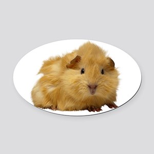 Guinea Pig gifts Oval Car Magnet