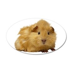 Guinea Pig gifts Wall Decal