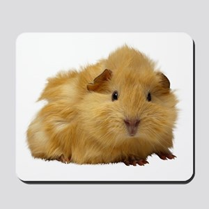 Guinea Pig gifts Mousepad