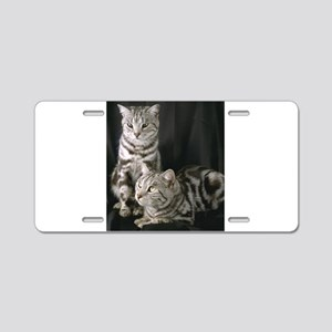 Grey Cat gifts Aluminum License Plate
