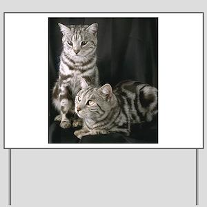 Grey Cat gifts Yard Sign