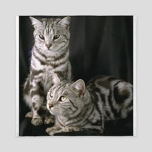 Grey Cat gifts Queen Duvet
