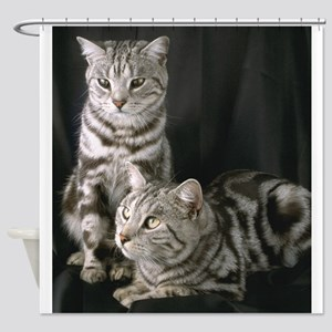 Grey Cat gifts Shower Curtain