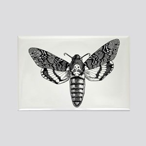 Deaths-head Hawkmoth Magnets