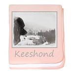 Keeshond at Shadow's Creek baby blanket
