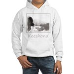 Keeshond at Shadow's Creek Hooded Sweatshirt