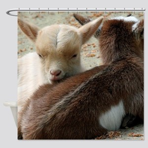 Goat 001 Shower Curtain