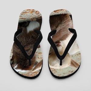 Goat 001 Flip Flops