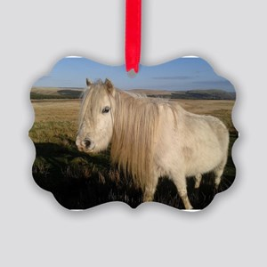 Welsh Mountain Pony Picture Ornament