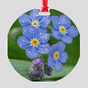forget-me-not Round Ornament